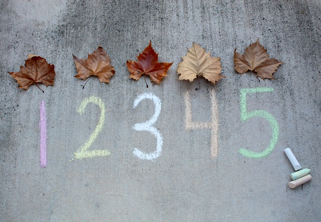 Leaf Number Game for Kids
