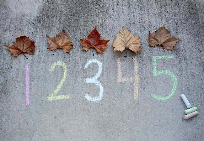 Leaf Number Game for Kids