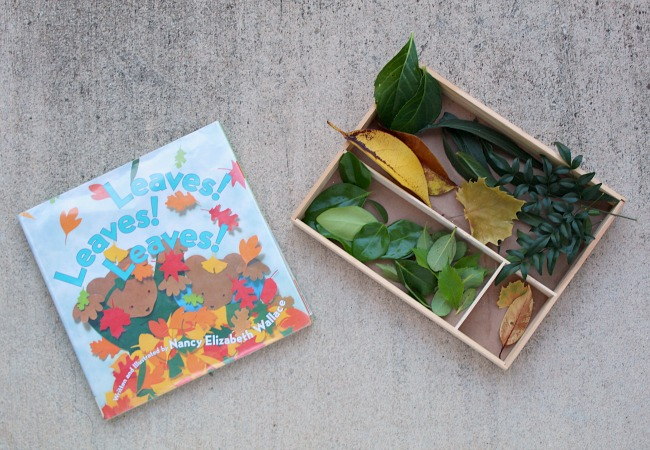 Leaves Book for Kids with Sorting Tray
