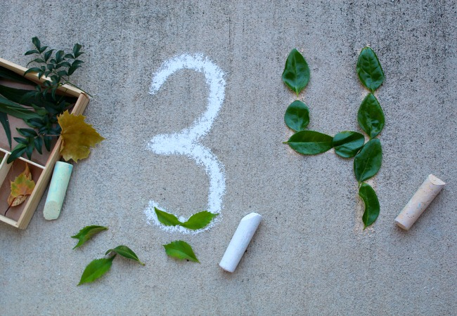 Making Numbers with Leaves