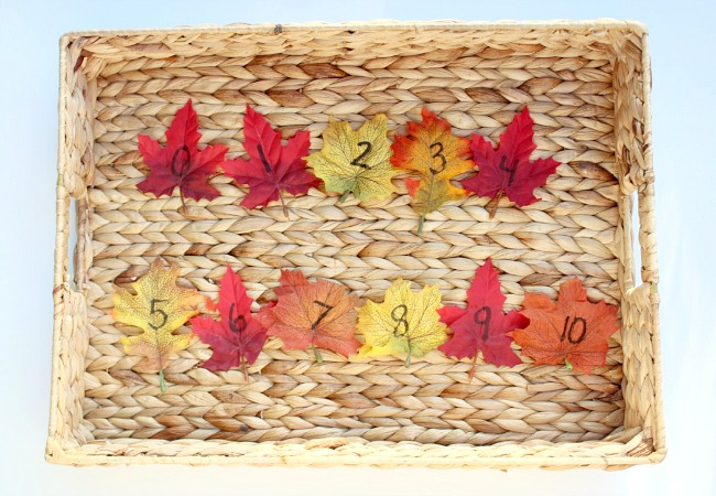 numerical order leaf game for kids this fall