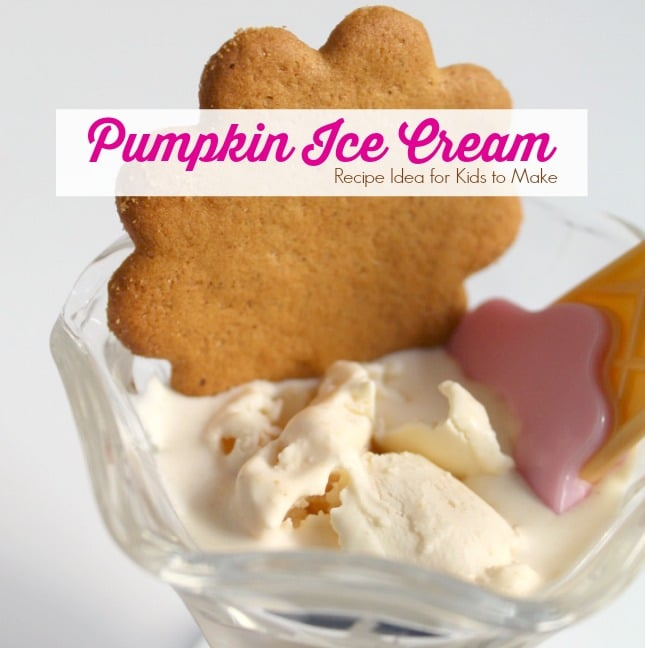 Pumpkin Ice Cream Recipe Idea for Kids to Make