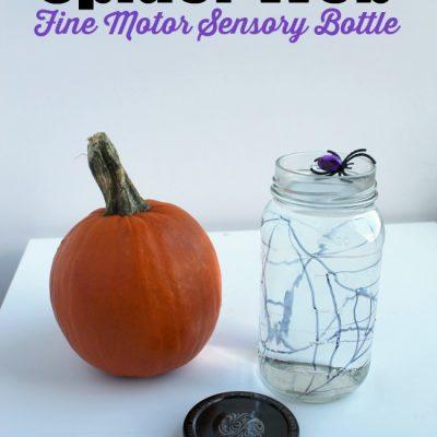 Fine Motor Spider Web Sensory Bottle Activity for Kids