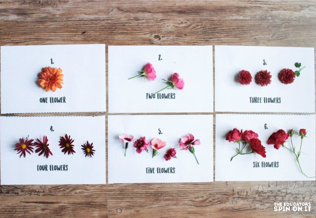 Counting Flower Activities for kids