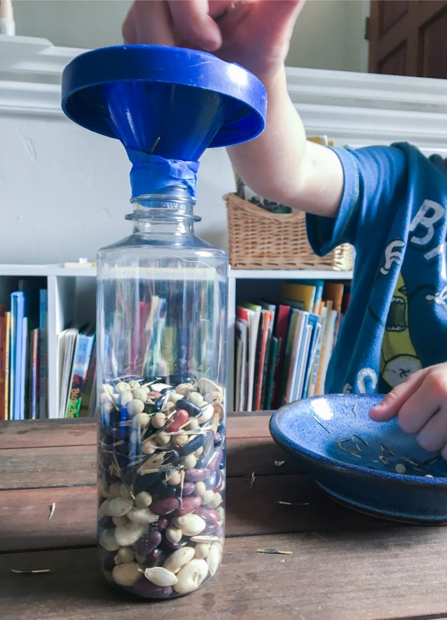 Seed Themed summer sensory bin for science exploration and learning. Great for science centers in preschool and kindergarten classrooms!