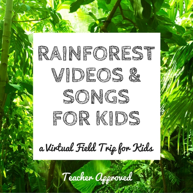 Rainforest Videos and Songs for Kids. A virtual field trip the kids will love to the jungle!