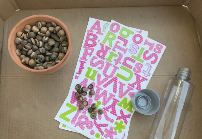 Supplies for Acorn Alphabet Sensory Bottle Game for Preschoolers