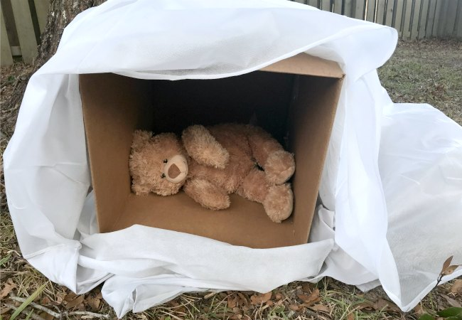 Bear Hibernating Pretend Play