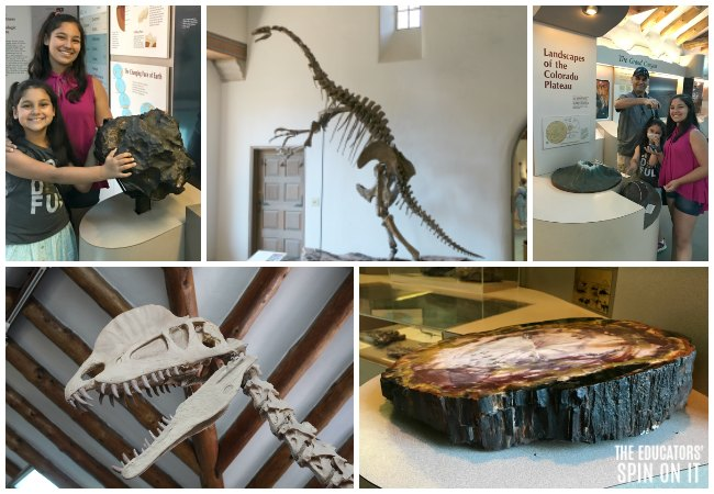 Exploring Prehistoric Animals, Petrified Food, Meteors and Volcanos at the Museum of Northern Arizona