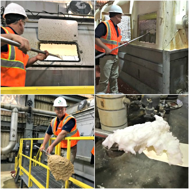 Process of taking Pulp into Clean Pulp at Georgia-Pacific Foley Cellulose in Perry, Florida