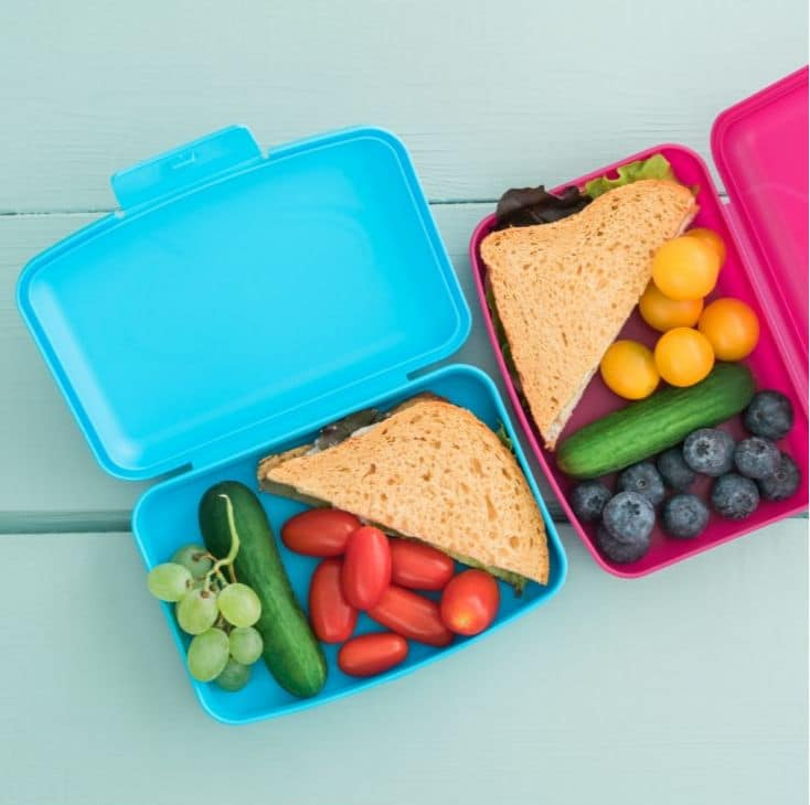 Lunch boxes for kids that features 100+ lunch recipes for parents