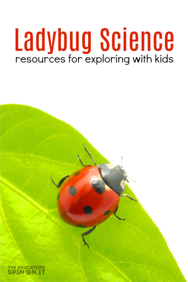 ladybug on leaf with resources for teaching kids about ladybug science