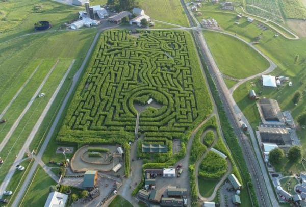 drown arial view of corn maze on farm for fall virtual field trip for kids.