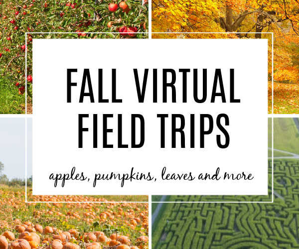 Fall Virtual Field Trips for Kids