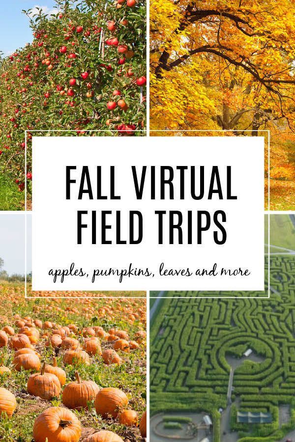 Fall Virtual Field Trips for Kids