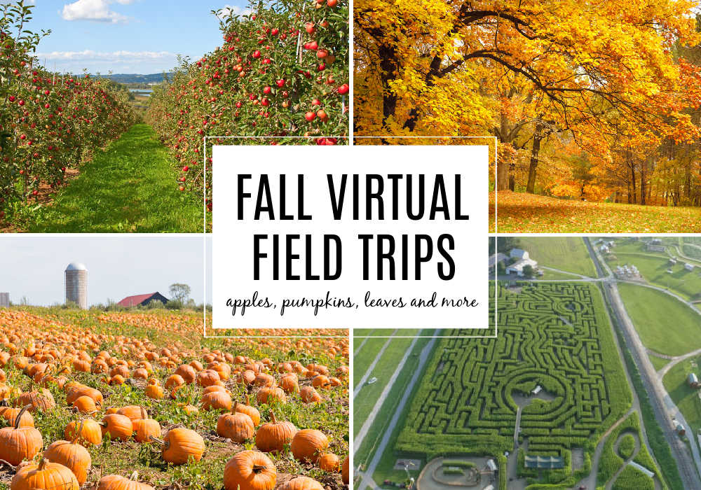 Fall Virtual Field Trip for Kids