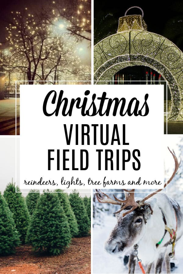 Christmas theme virtual field trip for kids with reindeer, holiday lights, christmas tree farms and more!