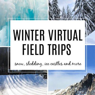 Winter Virtual Field Trips for Kids