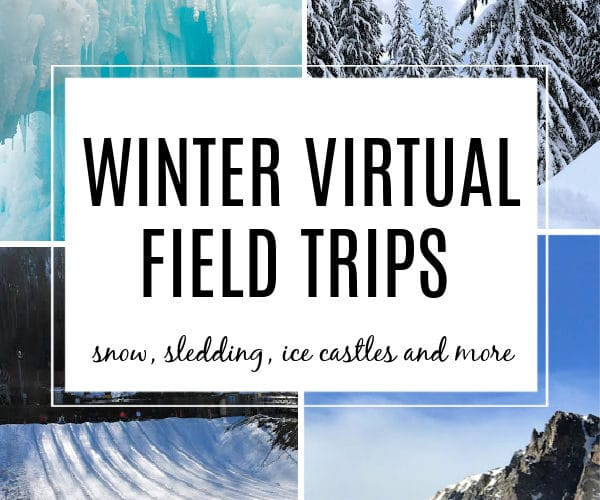Winter scenes of snow covered mountain, sledding, ice castles and evergreen trees for winter virtual field trip for Kids