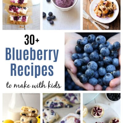 Blueberry Activities, Books, And Recipes