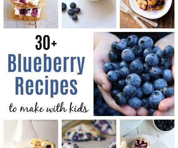 Blueberry Recipes for Kids to make