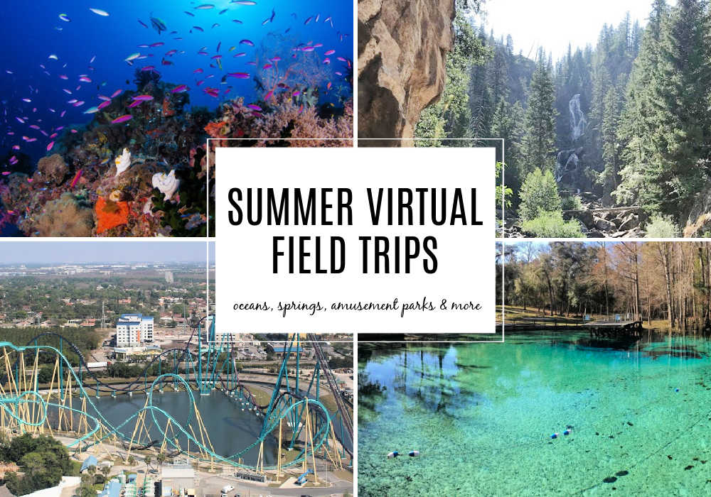 Summer Virtual Field Trips for kids featuring coral reefs, amusement park rides, beaches, springs and more!