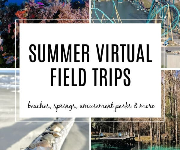 Summer Virtual Field Trips for kids. Explore Oceans, Beaches, Amusement Parks, Springs and more!