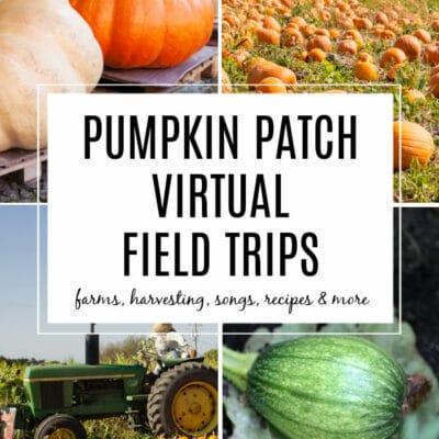 Virtual Pumpkin Patch Field Trips